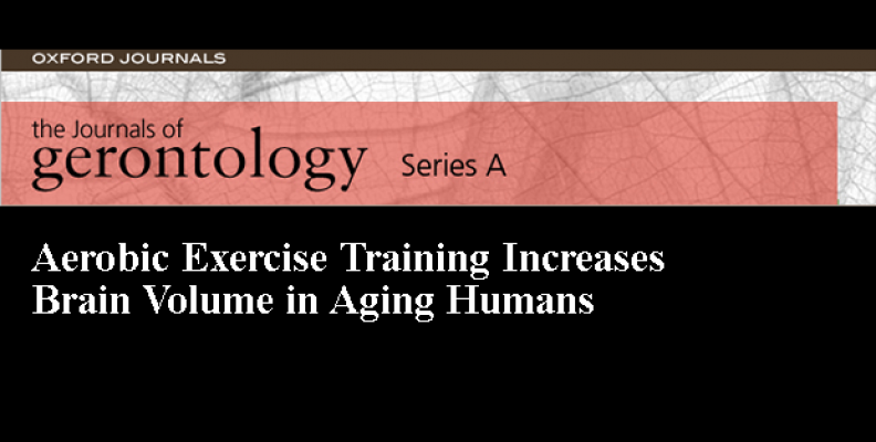 Aerobic Exercise Training Increases Brain Volume in Aging Humans