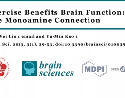 Exercise Benefits Brain Function: The Monoamine Connection